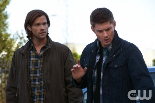 "Supernatural RECAP 11/5/13: Season 9 Episode 5 ""Dog Dean Afternoon"""