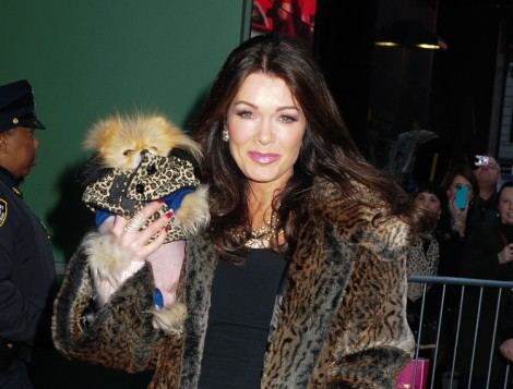 Lisa Vanderpump: Dancing With The Stars Gig Turning Housewives Against Her! 0227