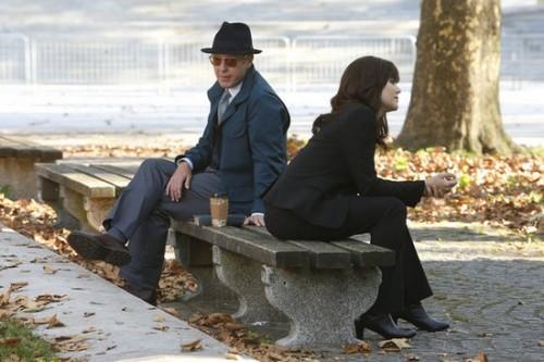 """The Blacklist RECAP 10/28/13: Season 1 Episode 6 """"Gina Zanetakos"""""""