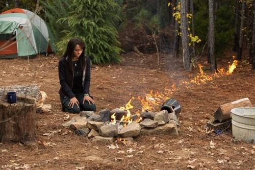 "The Vampire Diaries RECAP 2/7/13: Season 4 Episode 13 ""Into the Wild"""