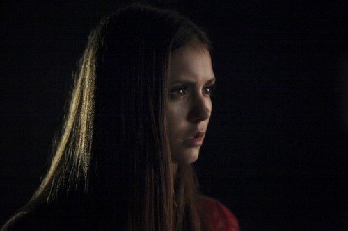 "The Vampire Diaries Season 4 Episode 6 ""We All Go A Little Mad Sometimes"" Sneak Peek Video & Spoilers"