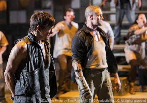 "The Walking Dead RECAP 2/10/13: Season 3 Episode 9 ""The Suicide King"""