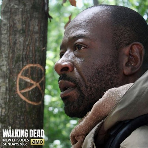The Walking Dead Spoilers Season 5 Episode 2 Video Preview Synopsis - What Questions Get Answered?