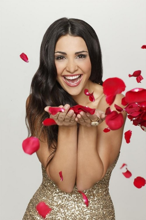 The Bachelorette Andi Dorfman RECAP 6/2/14: Season 10 Episode 4