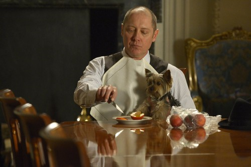 "The Blacklist RECAP 5/12/14: Season 1 Finale ""Berlin: Conclusion"""