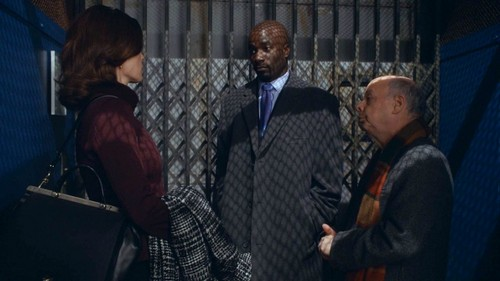 "The Good Wife RECAP 3/9/14: Season 5 Episode 13 ""Parallel Construction, Bitches"""