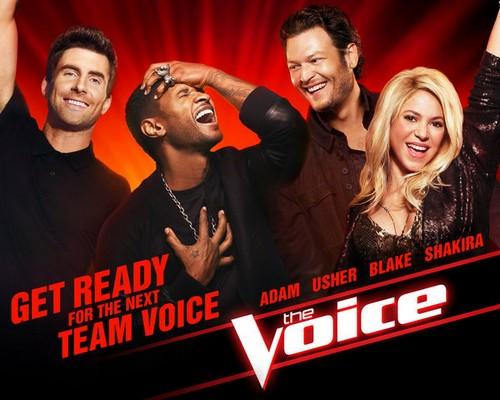 """The Voice RECAP 4/29/13: Season 4 """"The Knockouts, Part 1"""""""