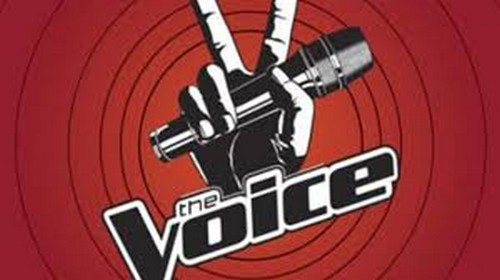 Who Got Voted Off The Voice Tonight 6/4/13?
