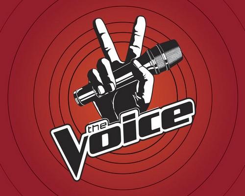 """The Voice RECAP 10/29/13: Season 5 """"The Knockouts, Part 2"""""""