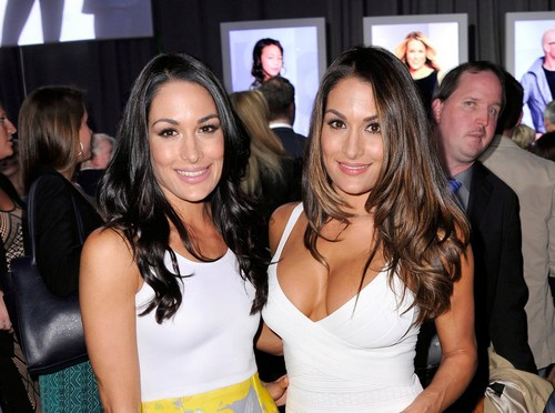 WWE: The Bella Twins Story is Beyond Help - Opinion