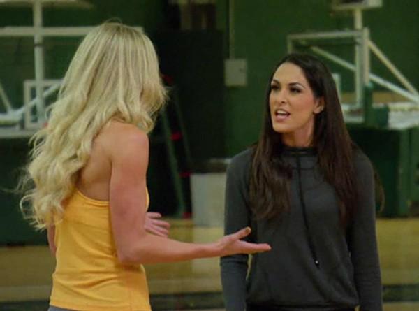"Total Divas RECAP 3/30/14: Season 2 Episode 3 ""On Brie's Bad Side"""
