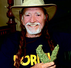 Willie Nelson's Lawyer Will Fight Drug Charge