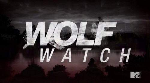 Wolf Watch Recap 7/14/14: Season 2 Episode 4