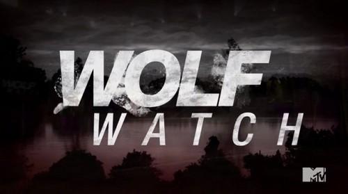 Wolf Watch Recap 7/28/14: Season 2 Episode 6