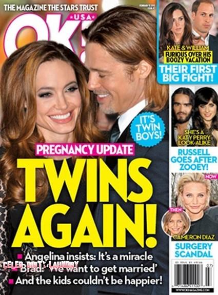 Angelina Jolie Pregnant Again With Twin Boys (Photo)