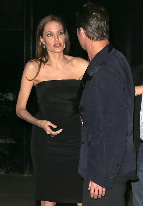 Angelina Jolie Pregnant by Brad Pitt: 'Miracle' IVF Baby, New Addition To Family?