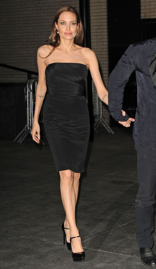 Angelina Jolie Pregnant After Successful IVF Treatment - Seventh Child
