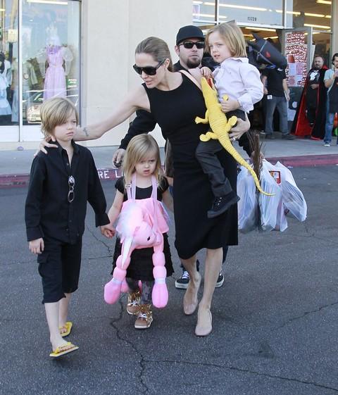 Angelina Jolie Jealous of Jennifer Lawrence and Says Some Nasty Words