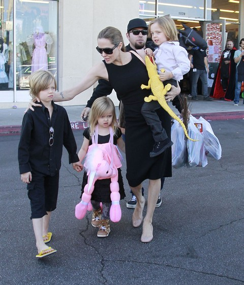 Angelina Jolie Is Normal - Grounded By Her Children's Poop