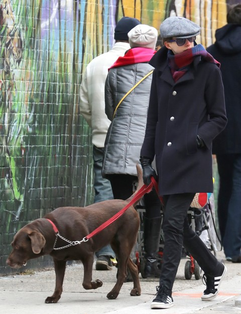 Anne Hathaway Abandons Her Old Dog For Stylish New Puppy