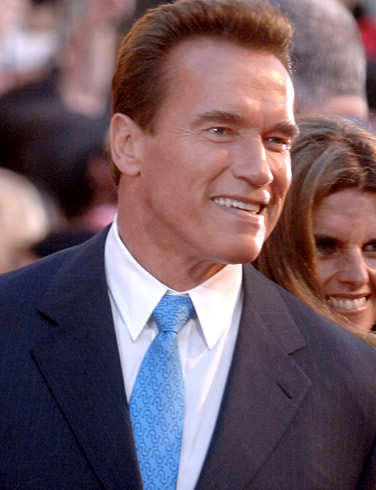 Arnold Schwarzenegger's Big Screen Comeback