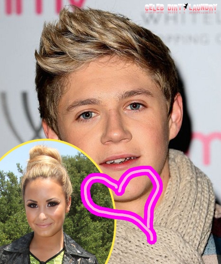 Niall Horan Caught In Whirlwind of Embarrassment While Meeting Girlfriend Demi Lovato's Family