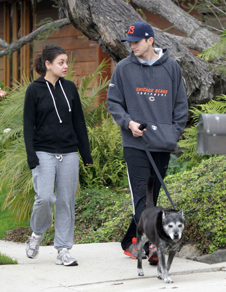 Ashton Kutcher Officially Files Divorce From Demi Moore to Keep Himself Out of Financial Trouble!