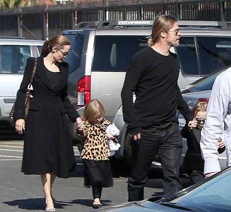 Angelina Jolie and Brad Pitt PETA Wedding Scandal: Will Elephants Be Used As Props?
