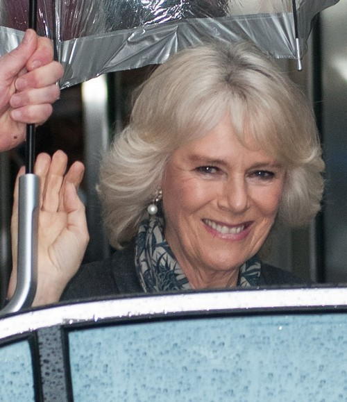 Camilla Parker-Bowles Found Drunk and Drugged By Prince Charles: Jealous of Kate Middleton's Triumph Down Under