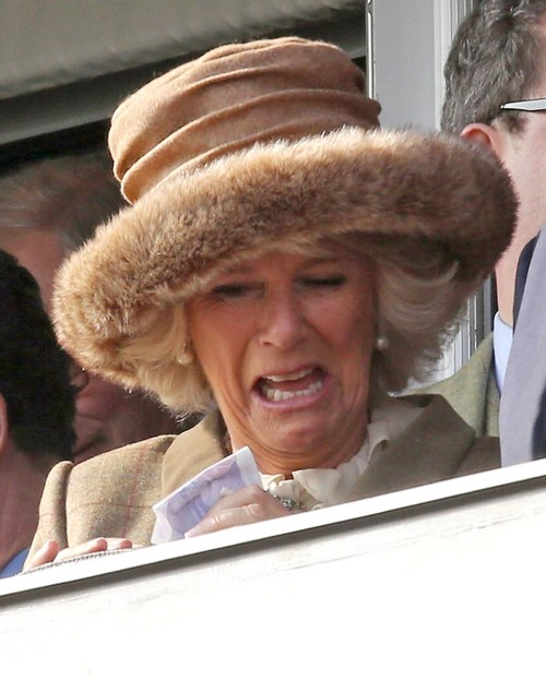 Kate Middleton's Bare Naked Bum Photo Delights Camilla Parker-Bowles: Celebrating Kate's Embarrassment