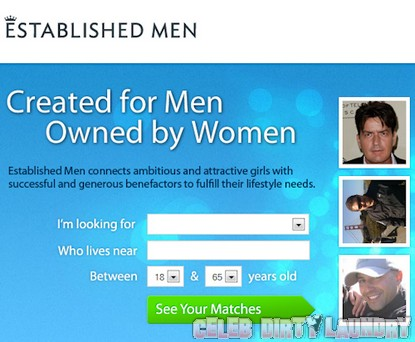 Charlie Sheen Offered $3 Million For 'Established Men' Dating Company