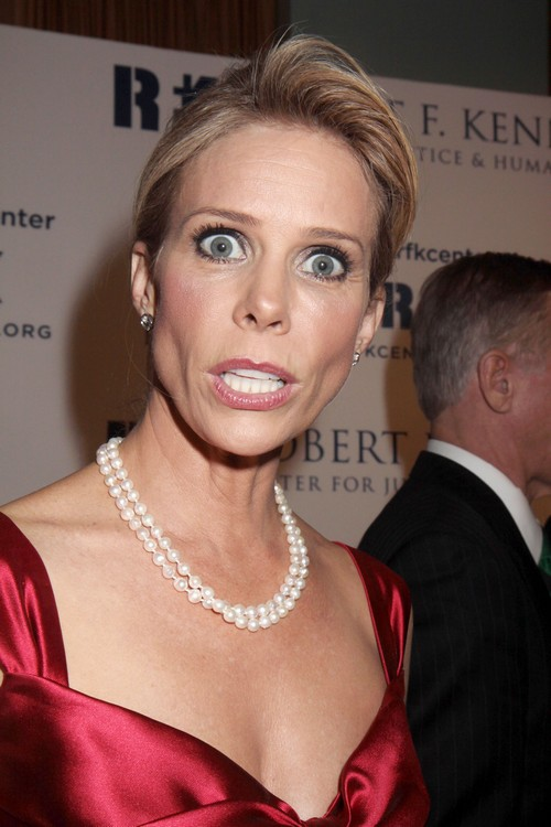 Robert F. Kennedy Jr.'s Girlfriend, Cheryl Hines, Blamed For Mary Kennedy's Suicide, Hated By Kennedy Clan