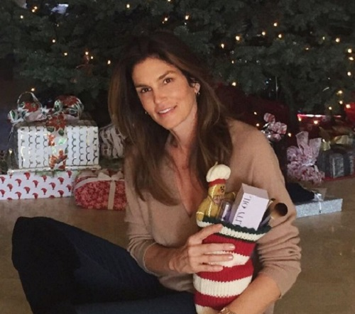 Cindy Crawford Refuses To Come Clean About Plastic Surgery: Slams Social Media Bullies