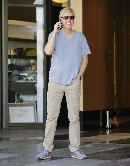 Portia de Rossi and Ellen DeGeneres Divorce Threatened: Split After Baby Plans Fall Apart?
