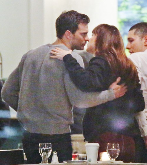 Fifty Shades Darker Jamie Dornan Trouble Reconnecting With Dakota Johnson: Amelia Warner New Baby to Blame?