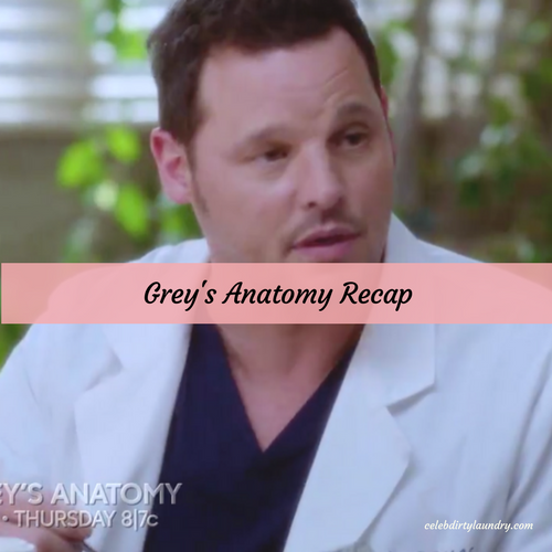 "Grey's Anatomy Recap 4/27/17: Season 13 Episode 21 ""Don't Stop Me Now"""