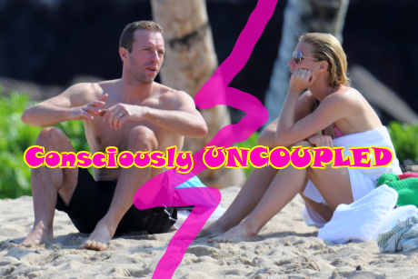Gwyneth Paltrow And Chris Martin's Giant 9-Foot Fence Surrounding Their Property Finally Causes Neighbors To Explode In Anger!