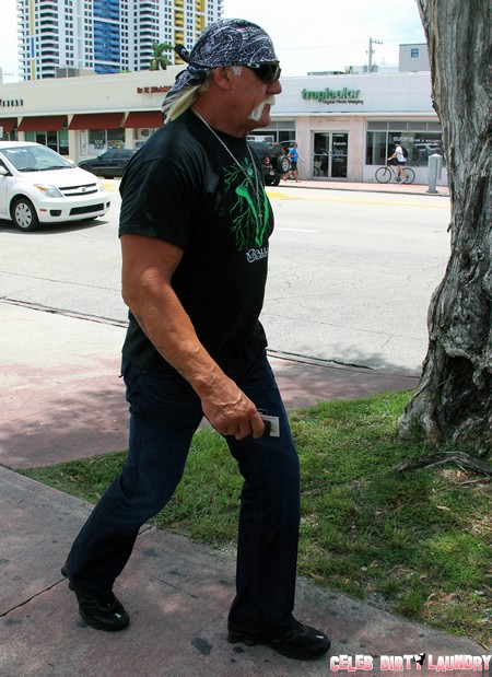 Hulk Hogan Sex Tape Move Over - New Celeb Partners For Bubba the Love Sponge's Wife Heather Clem Revealed