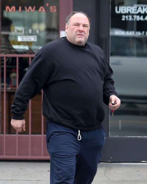 James Gandolfini: Drug and Alcohol Abuse Killed Him - Fatal Heart Attack After Heavy Drinking At Dinner