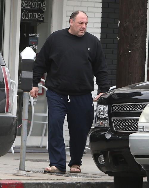 """James Gandolfini's Death at 51 Destroys """"The Sopranos"""" Movie Hopes - Who Can Play Tony Soprano?"""