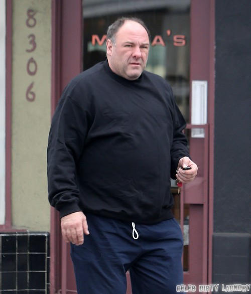 James Gandolfini's Cocaine and Alcohol Rehab History - What Part Did Drugs Play In His Sudden Death?