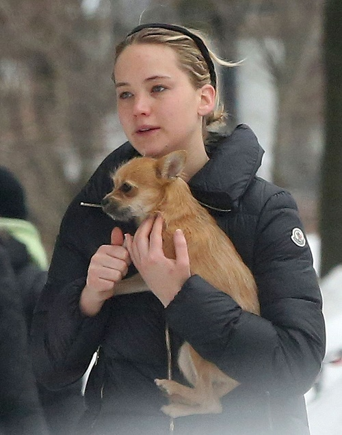 Jennifer Lawrence & Chris Martin Still Dating