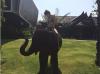 kardashian_jenner_thailand_vacay_2