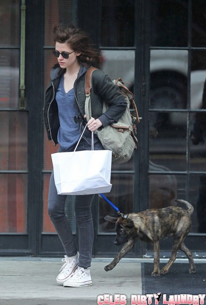 Robert Pattinson And Kristen Stewart Admit To Adopting A Dog – But Will They Ever Admit to A Relationship?