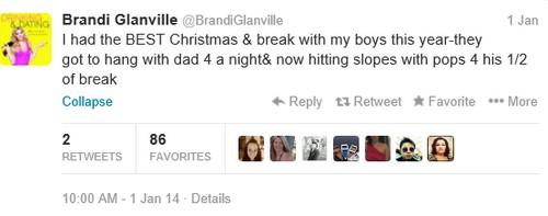 LeAnn Rimes Stalking Brani Glanville and Lying as New Year Twitter War Begins