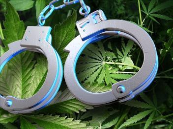 Defendant Asks Judge For One Last Marijuana Joint!