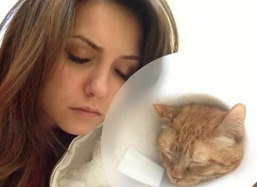 nina-dobrev-and-her-cat-moke