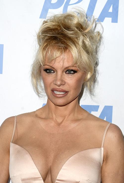 sex Pamela Anderson bruker sexleketøy for menn