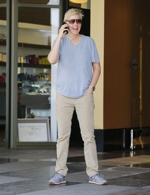 Ellen DeGeneres and Portia de Rossi Divorce and Break-Up Over First Child?