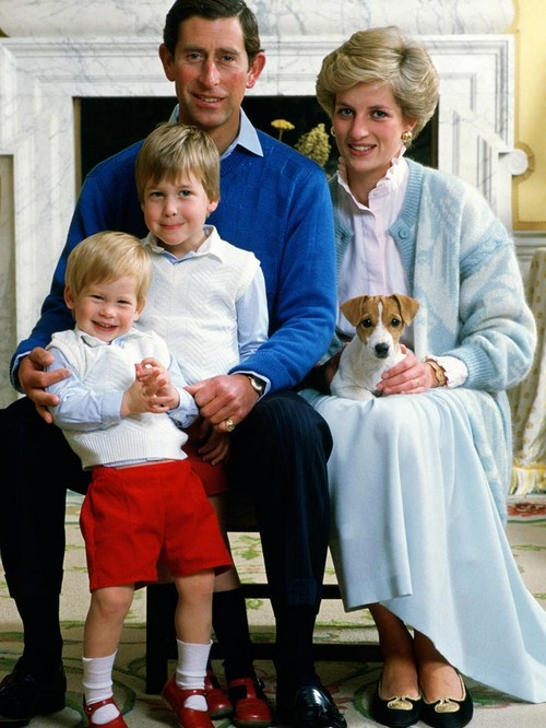 Kate Middleton and Prince William Want Revenge For Princess Diana's Murder